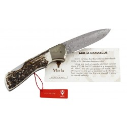 Coltello da collezione Bx-8A Folding in acciaio damascato, (collection knives).