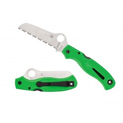 Spyderco Atlantic Salt Green Serrated C89FSGR